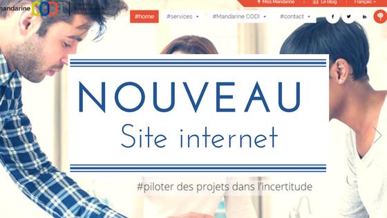 Site internet Mandarine CODI